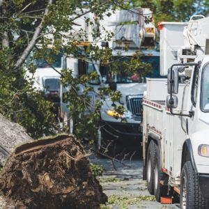 Power crews arrive in Halifax after wide spread power outages from Hurricane Dorian.